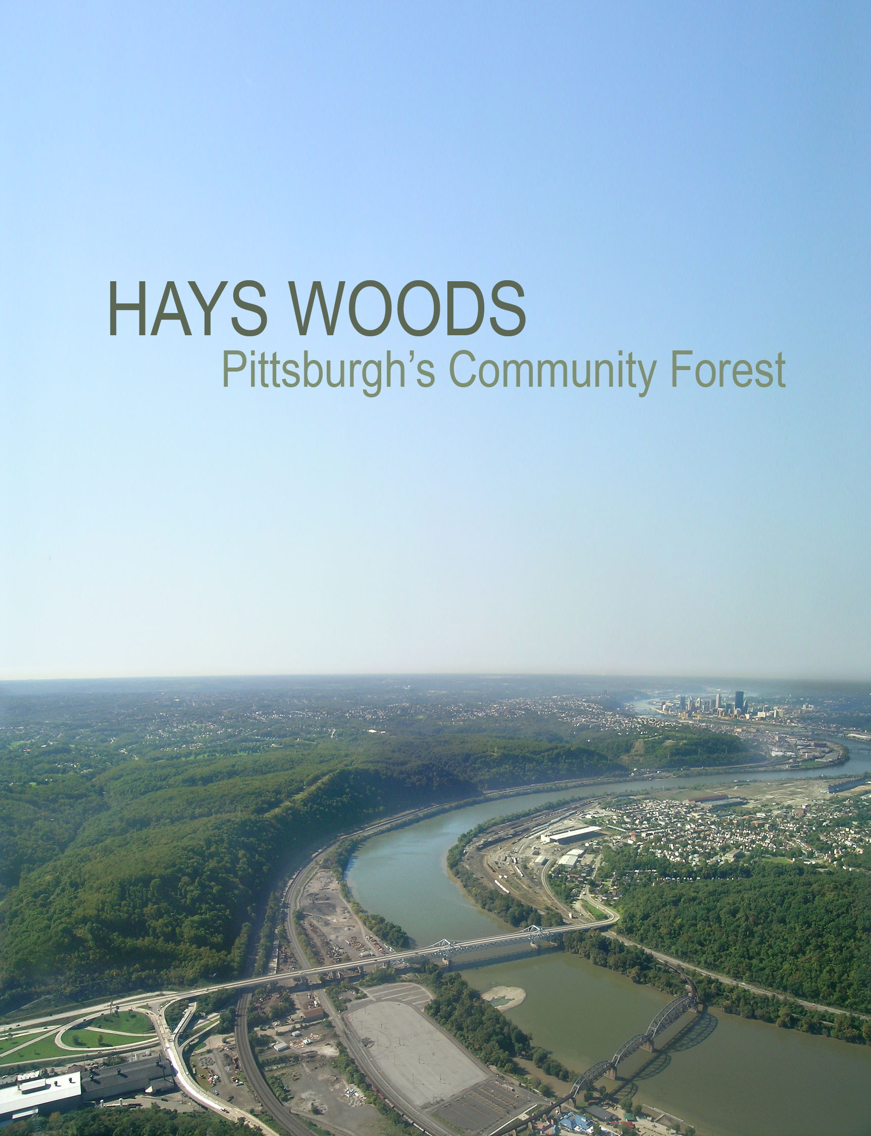 hays woods project